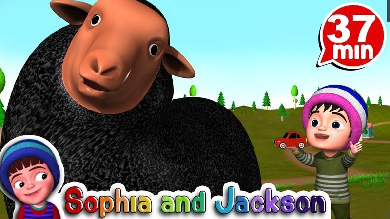 Baa Baa Black Sheep   Nursery Rhymes Collection   baby songs   Nursery rhymes   Sophia and Jackson