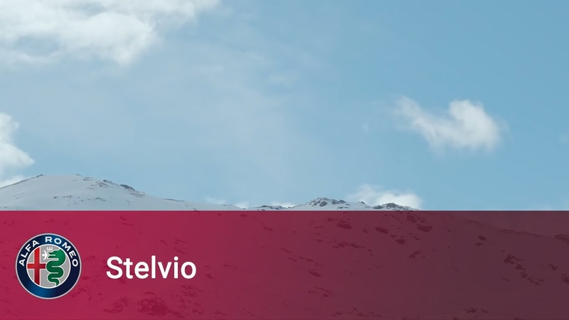 Alfa Romeo Stelvio I've been waiting for you