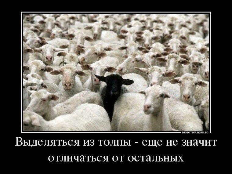 Каждым обучение фотошоп онлайн на русском бесплатно чувствовал, как дрожит