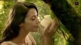 Orkidea - Beautiful