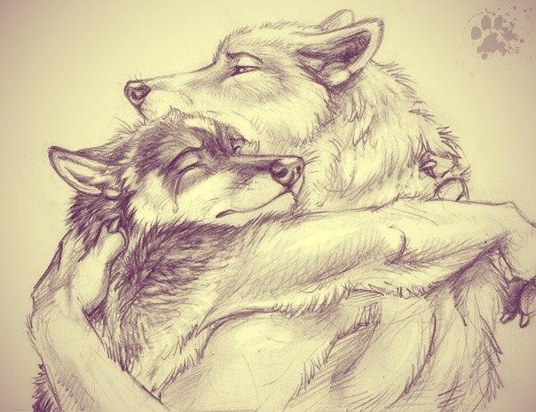 Волки♦