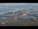Если вы заметили квадратные волны на воде, держитесь от них как можно дальше. И вот почему