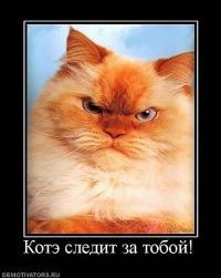 Макс Фёдоров, 24 ноября 1994, Санкт-Петербург, id168629699