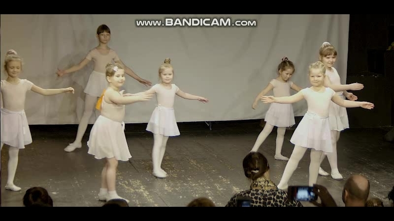 Балетное выступление