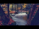 Japanese traditional relaxing music | Koto, Zen Garden, Instrumental, Spa – Nº 003