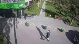 У ветеринарной клиники Аверии в Волгограде опять воруют