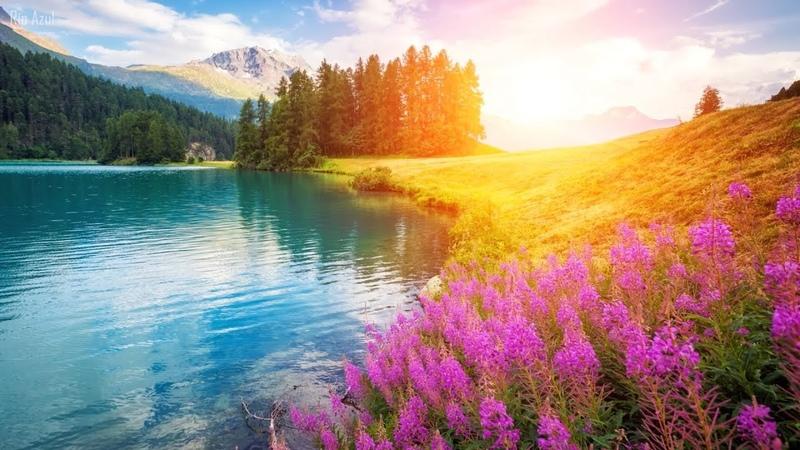 Hermosa Música Relajante: Música de Violín, Piano, Violonchelo   Música Romantica ☼21
