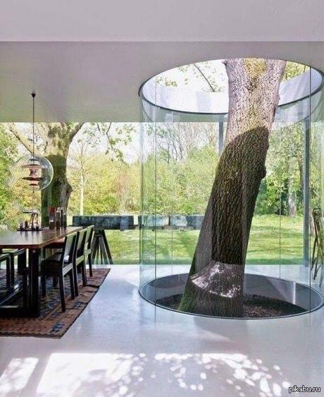 Следующий тост за архитектора!