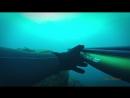 Подводная Охота Азорские Острова Часть 2 Spearfishing in the Azores Pico Islands 2015