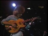 Pat Metheny Group - The Fields, the Sky - 1989