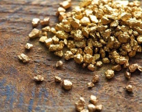 Крупнейшее месторождение золота нашли в Ростовской области