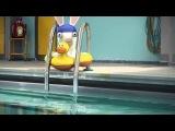 Бешеные кролики не умеют плавать)))))))