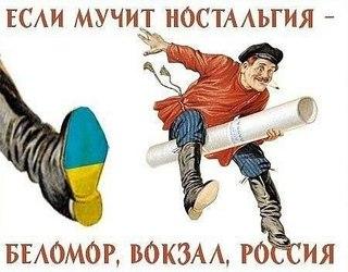 В автопарке Януковича коллекционные машины оказались крадеными - Цензор.НЕТ 1379