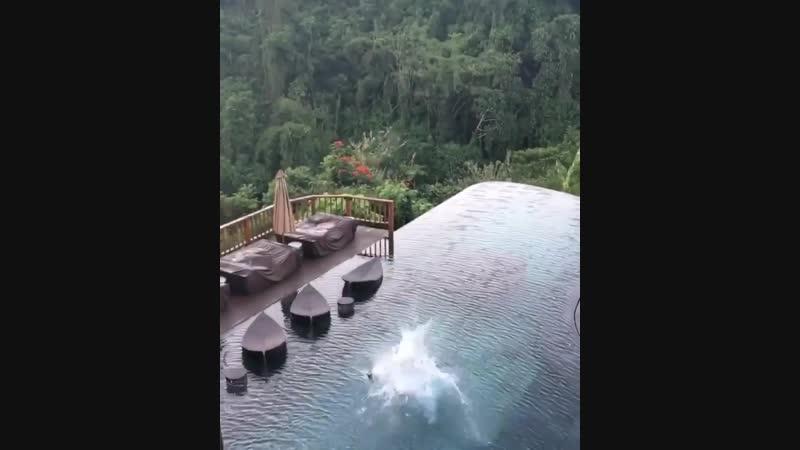 Вы бы прыгнули ?? 😀👌