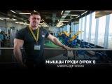 Мышцы груди (Урок 1). Александр Эскин