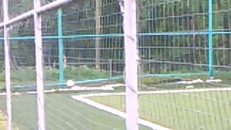 Мини футбол на Педе ТРО ФСЖР 11 22 05 2018 после 17 30