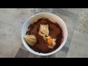 How to cook tiramisu
