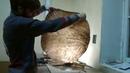 Renew Broken Irish to Shaman Drum. Making a new skin and handle . Russia