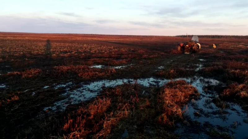 выезд с болота