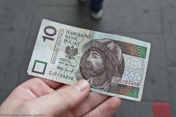 деньги польши фото
