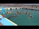 Дельфинарий Куба 8