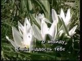КАЖУТЬ, ВСЕ МИНЕ — караоке Українська народна пісня Ukrainian folk song karaoke