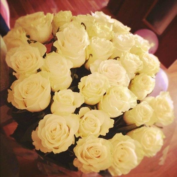 какого цвета розы подарить женщине