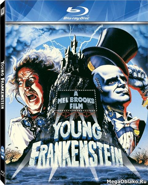 Молодой Франкенштейн / Young Frankenstein (1974/BDRip/HDRip)
