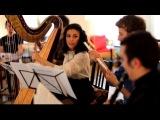 звуки ц - арфа, флейта, фагот, кларнет