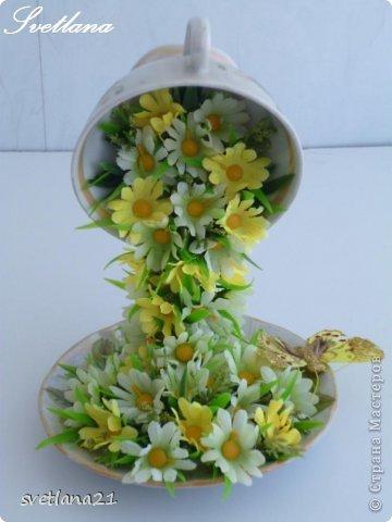 Цветочные чашечки  Автор: svetlana21