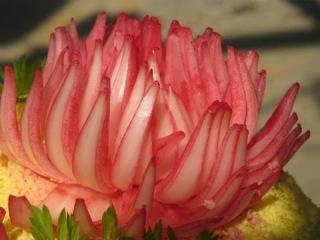 Восхитительный цветок из лука