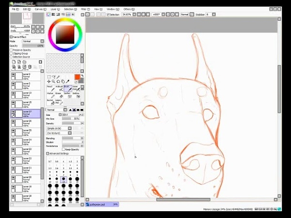 Speedpaint - Doberman
