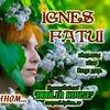 Концерт Ignes Fatui 18.05.2014