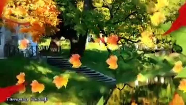 Листья жёлтые медленно падают