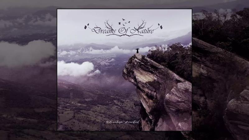 Dreams Of Nature - Condor De Los Andes