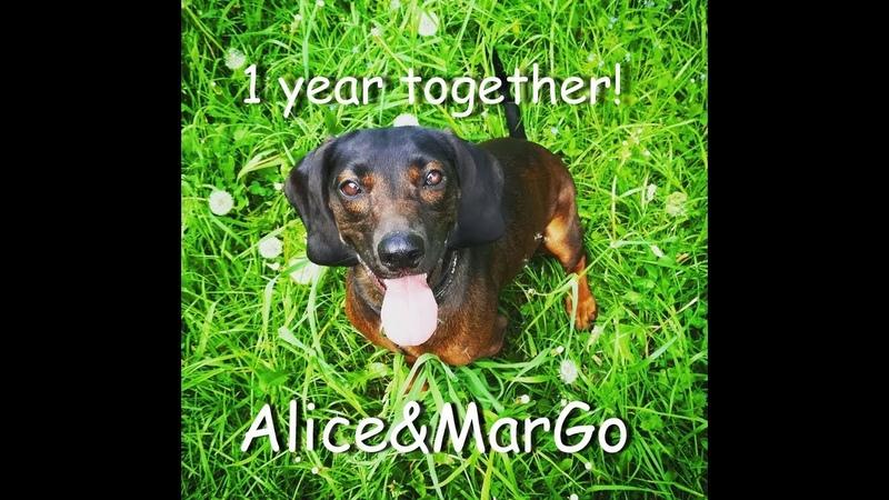 1 year together AliceMarGo happytime