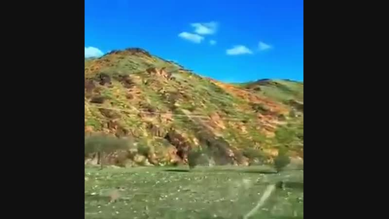 I know it rained recently, but I cant believe this is in Saudi Arabia - - It was narrated