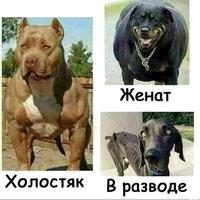 Анкета Олег Ветер