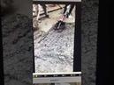 XCORT POWR TOOL mud mixer