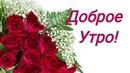 Доброго Зимнего Утра! С Добрым Утром! Красивое поздравление. Пожелания. Видео. Открытка