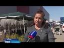 Оренбургским садоводам предлагают саженцы плодовых деревьев и роз