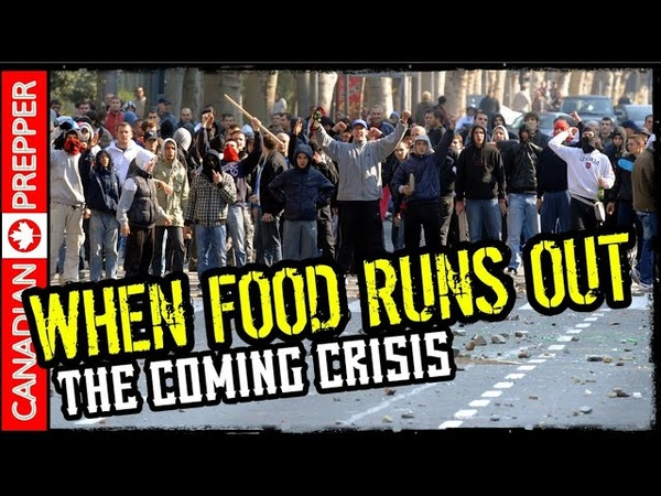WARNING The Coming Food Crisis | Be Ready 2019