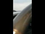 топ видео порн блондинка латинка мулатка рыжая чёрная русая русское юмор картинки фото и видео приколы жопа сиська
