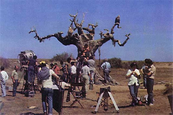 ÁLBUM DE FOTOS Conan the Barbarian 1982 OZIq89LjQyE