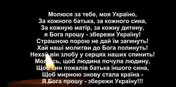 Павленко отозвали с должности министра, чтобы его обезопасить, поскольку ему не давали контролировать ситуацию в аграрном секторе, - Сыроид - Цензор.НЕТ 7673