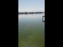 Видео отчет гостей с Рыбацкой Усадьбы