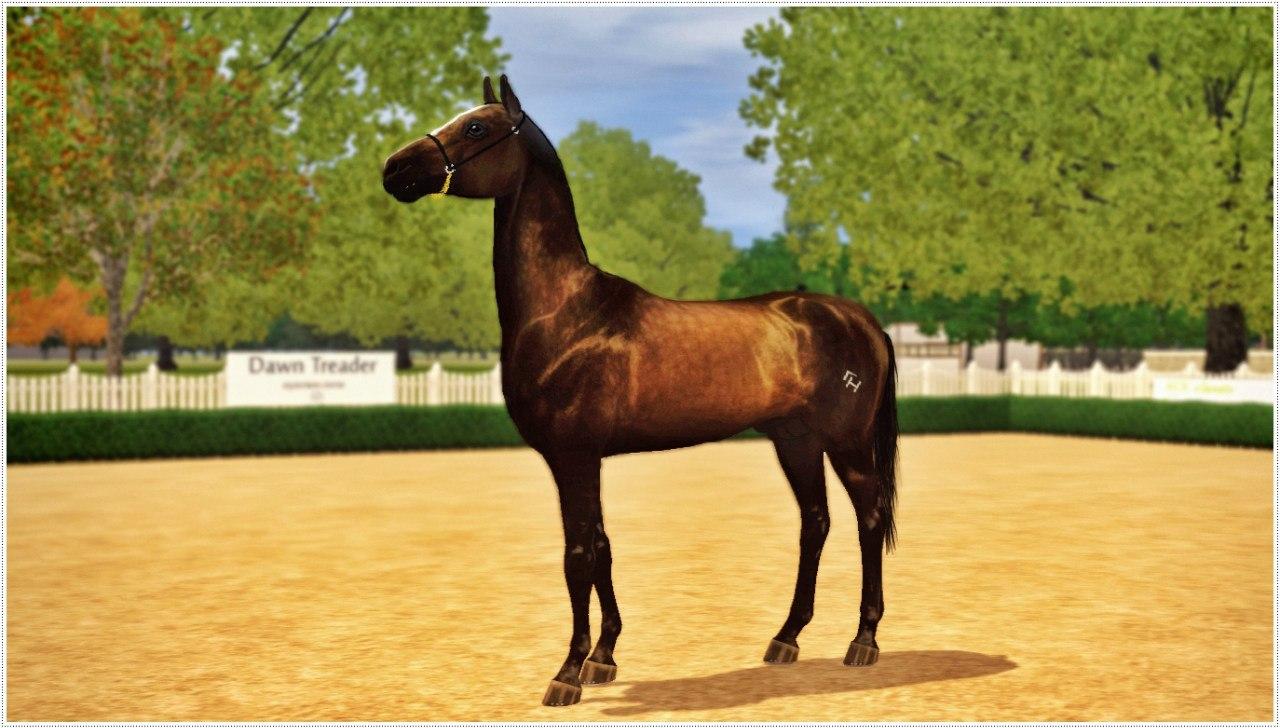 Регистрация лошадей в RHF 2 Gl0-ApjswzA