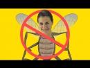 Народные средства от комаров, которые помогут вам выжить на природе