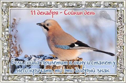 https://cs7052.vk.me/c7003/v7003305/2a794/i6Z-TX3YV0U.jpg