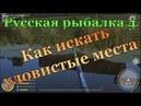 Русская рыбалка 4 🔴тихий вечер 🔴 Клев есть